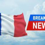 Двух китов-полосатиков заметили у берегов Франции